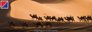 GER to GER Mongolia - Highlights of Mongolia Packaged Trip