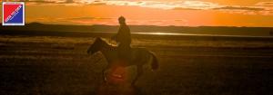 GER to GER Mongolia - Horseback Riding vs Overland Travel