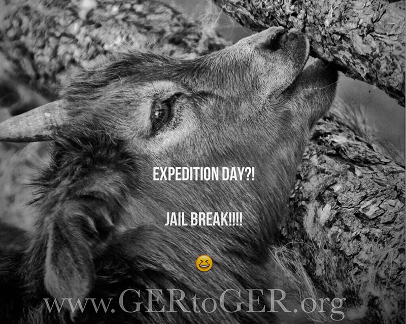 GER to GER Expedition Day!!!