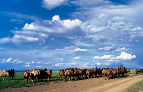 GER to GER GEOtourism Mongolia - Gobi Desert and Camels