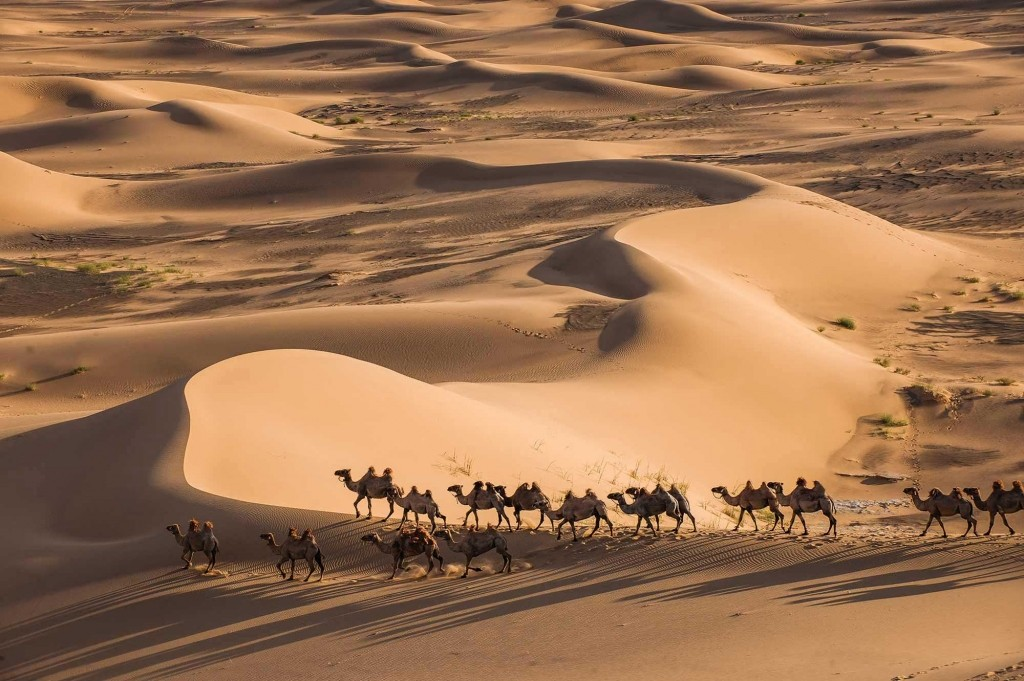 GER to GER GEOtourism Mongolia - Gobi Desert