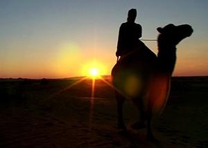 GER to GER GEOtourism Mongolia - Camel and Horseback Riding