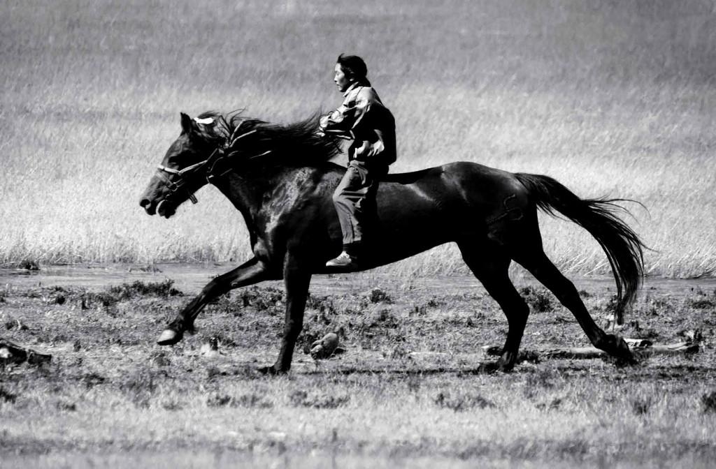 MONGOLIA HORSEBACK RIDING TOURS - Naadam Horse Race