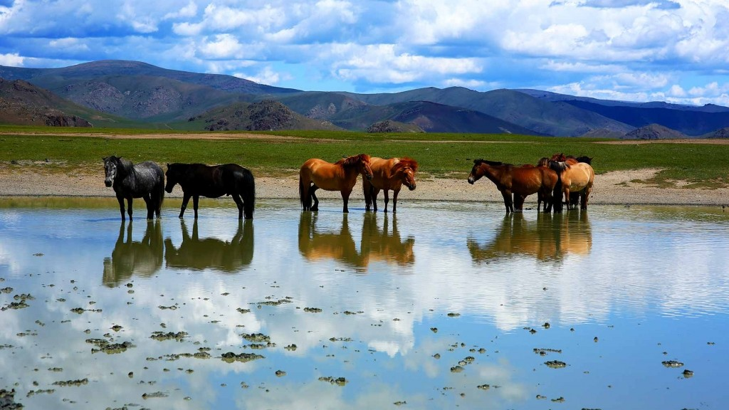 GER to GER GEOtourism Mongolia - Ulaanbaatar City Tours and Attractions