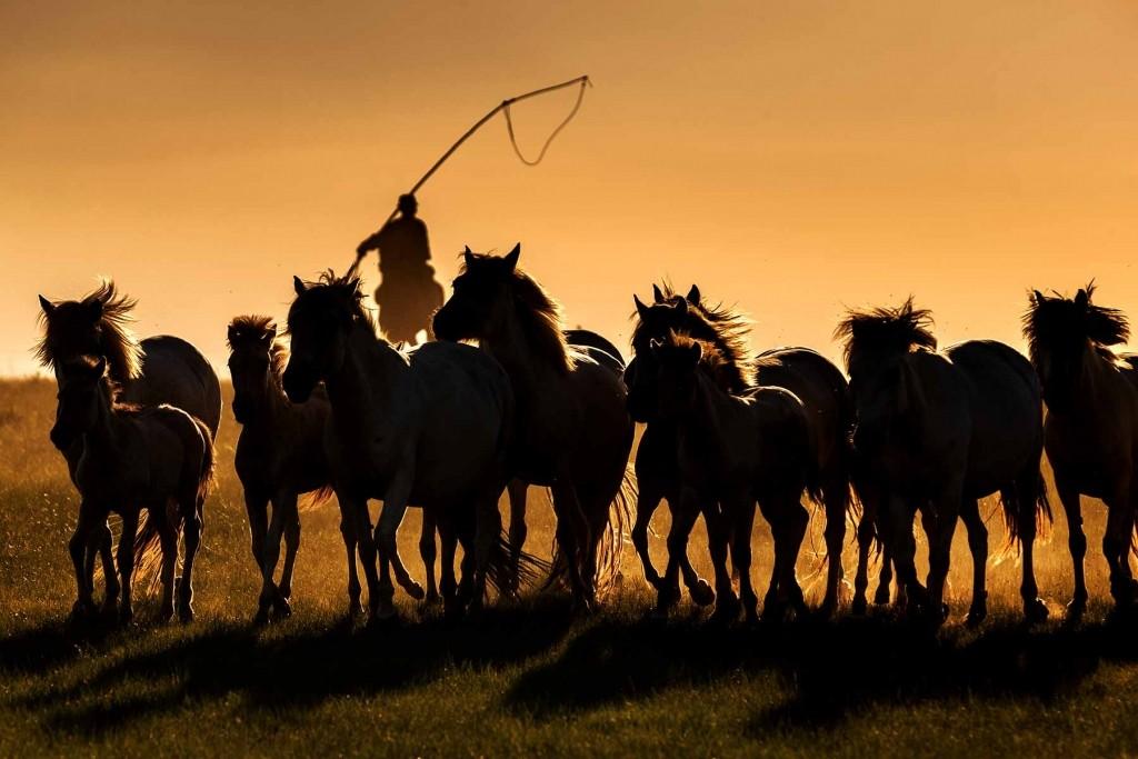 MONGOLIA HORSEBACK RIDING TOURS - Mongolia Horse Culture Worshipping